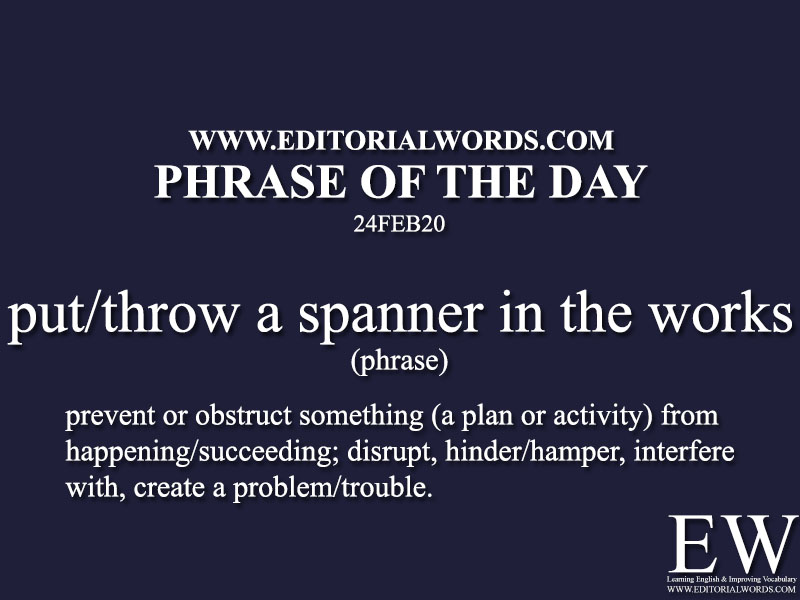 Phrase of the Day (put/throw a spanner in the works)-24FEB20