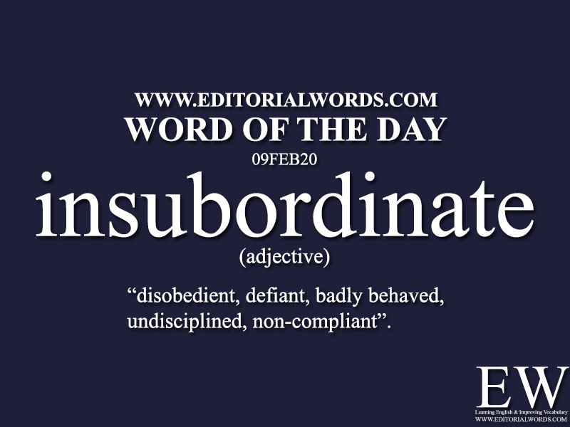 Word of the Day (insubordinate)-09FEB20