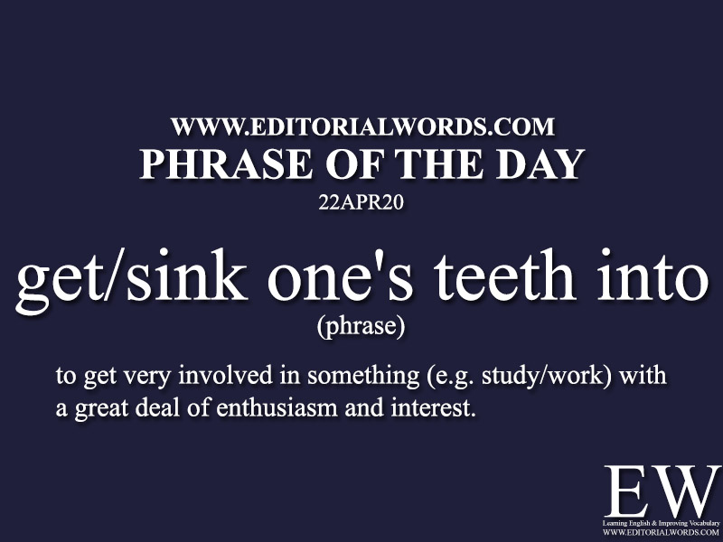 Phrase of the Day (get/sink one's teeth into)-22APR20