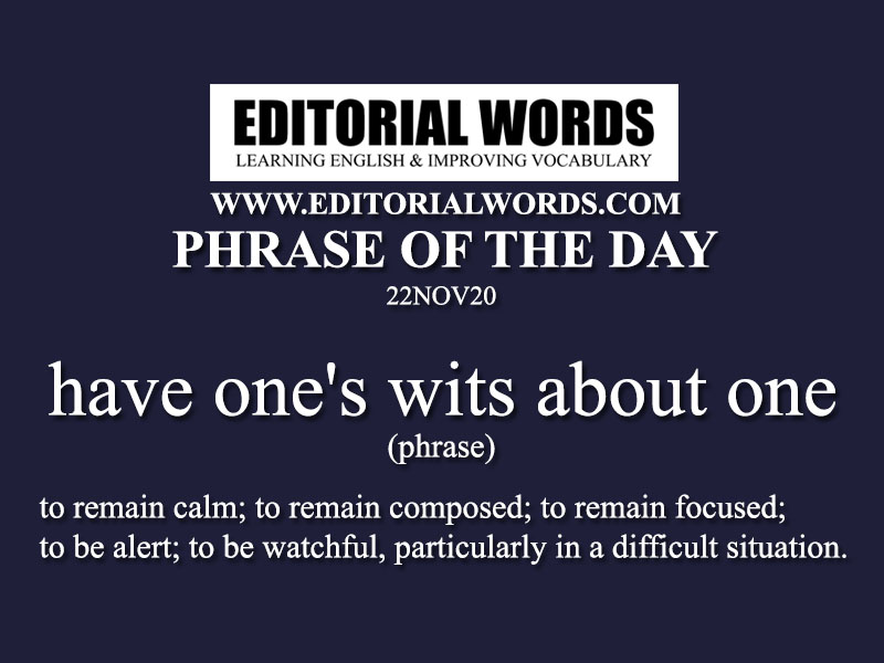 Phrase of the Day (have one's wits about one)-22NOV20