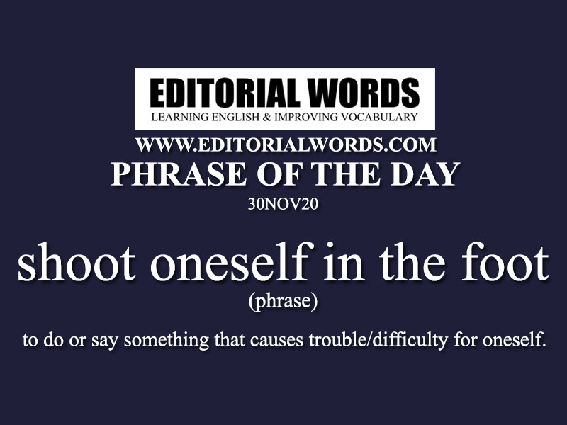 Phrase of the Day (shoot oneself in the foot)-30NOV20